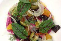 Colorful Salad Courses