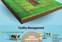 Home - Horse Property and Farmland/Homestead