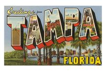 Tampa Bay Businesses