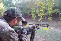 Hunting / #crossbow