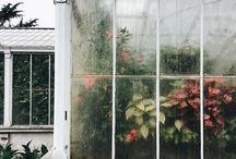 greenhouses / waterlily houses