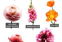 цветочная тема