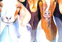Animais em Aguarela