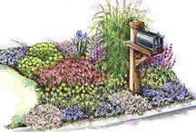 Gardening / by Rebecca Birtcher