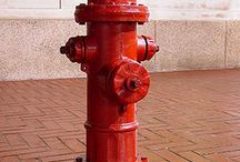 Fire Hydrants I want to mark / by PrestonSpeaks.com A Blog From a Dog's Point of View