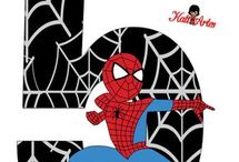cifre spider