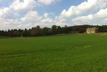 Beautiful Nottinghamshire. / A county I love.