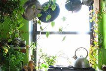 Rooms-kitchen
