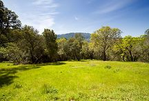 SOLD-View Building Parcel / 5± acre parcel: Sonoma Mountain views on a wine country lane between Glen Ellen & Kenwood. Mature oaks & olives, a grassy meadow, private, 5± minutes to all amenities; conceptual house design by architect Daniel Solomon. Surrounded by substantial properties, includes approved 3-bedroom septic design, paved road to parcel, utilities nearby. Close to town, schools, gourmet grocery, restaurants and wineries; approximately 1 hour to San Francisco. Offered at $725,000