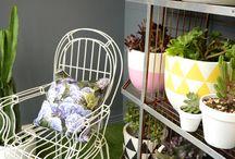 Flower painted pots / garden dye