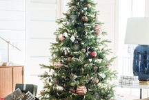 Holidays/Christmas!