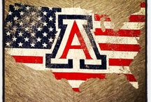 ARIZONA!! Bear Down / by Terri Francy