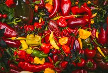Chilli Galleries / Image drops of our chillies