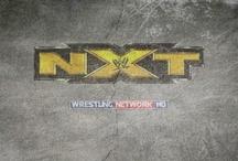 WWE NXT / by Wrestling-Network.Net