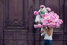 Flowers + Blooms