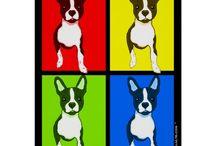 Boton Terriers