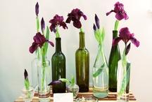 Home Decor Ideas / by Heather Fannin McWhirter