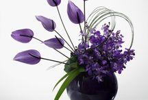 virágcsoda