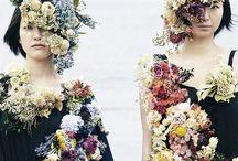 flower&ph