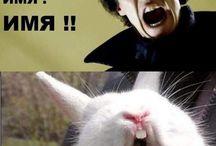 humor +)