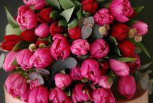 Flower compositions / Цветочные композиции