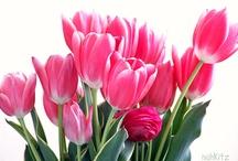 lovely flowers / by Anja Naehkitz