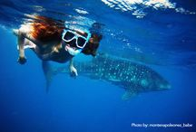Philippines: 7,107 Islands of Fun