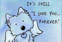 Dog's soul