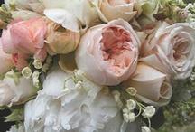 květiny a vyzdoba