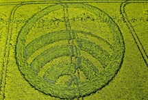 """Crop Circles / A crop """"circle"""" is a geometric pattern, often very intricate and complex, appearing in fields, usually wheat fields and usually in England."""