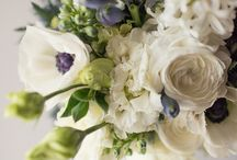 Anna Wedding / Anna is having a lovely early spring wedding! Consisting of navy blues and creams!!