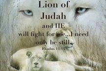 lion of judah, the King is coming.
