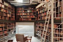 Dorian Thorne's Library / The most important room in your dream house.