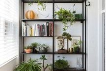 Librerias y Plantas
