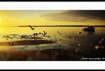 My Landscape Photography