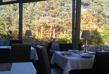 Winiarnia W Juracie / Restauracja Winiarnia w Juracie- dysponuje dwiema salami.Jedna z panoramicznymi oknami na sosnowy nadmorski las, druga klimatyczna ,zaciemniona . Jesienią ,zimą i wiosną w Juracie panuje przyjazny, komfortowy klimat na wszelkiego rodzaju spotkania-kameralne, konferencyjne a nawet huczne.Serwujemy znakomitą kawę , lunche, obiady ,kolacje. Konferencje jak i przyjęcie możemy zorganizować dla około 80-u osób.