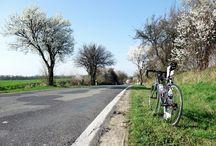 Fahrräder Bikes Velo