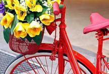 Bicicletas com flores