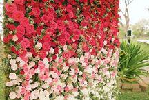 mur extérieur fleuri