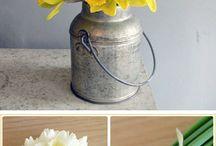 Narcissus weddings