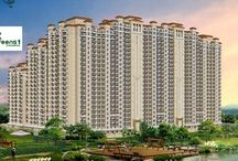 """Casa Greens 1 / Radhey Krishna Group is offering its project """"Casa Greens 1"""" with an affordable yet luxurious lifestyle homes, where green reigns supreme. Casa Greens 1 is the only project in Noida Extension which has not given any commercial space in front of their apartments."""