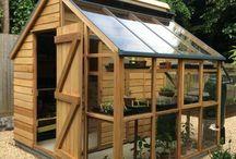 Greenhouses + veg.gardens