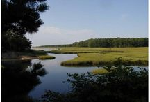 Biddeford Conservation Commission