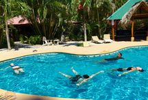 Costa Rica Yoga Teacher Training / by evolation yoga