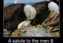 A Salute to our Veterans / by Cathy Kantowski
