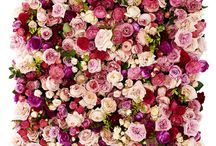 FLOWER WALLS / Floral walls full of blooms or with just a few accents for events, activations, and weddings.