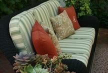 Succulents / Succulent dish gardens I Love! / by Julie Turner