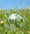 Renewable Energy: Things to Think About / Articles, posts on renewable energy and the environment.