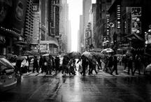 Pictures I love  / by Ella Munoz