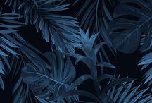 Blue Tábla